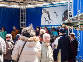 Der Büsumer Ankerplatz fest in der Hand einiger Percussion Künstler